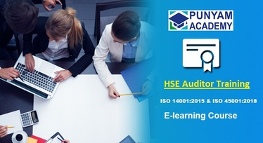HSE audior training